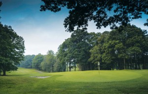 Redditch Golf Club Green and Trees