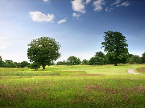 marriott-worsley-park-golf-club-11th-hole