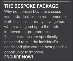 david fulcher PGA professional golfer lesson offer