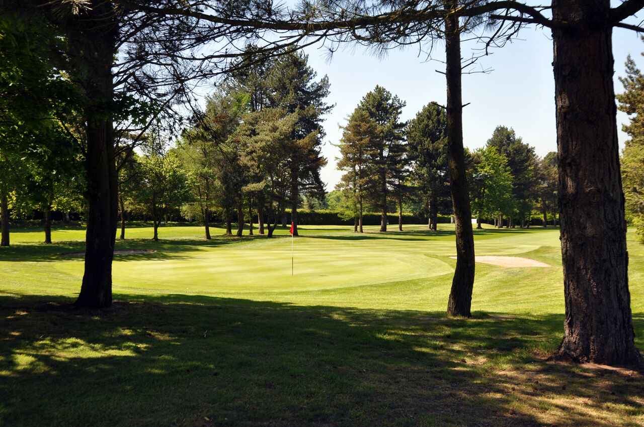 South Staffordshire Golf Club Trees