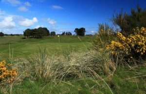 monifieth-golf-club-17th-hole