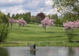 Market Harborough Golf Club