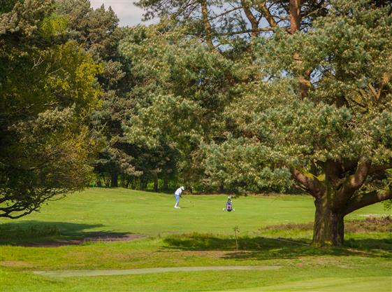 Market Rasen Golf Club
