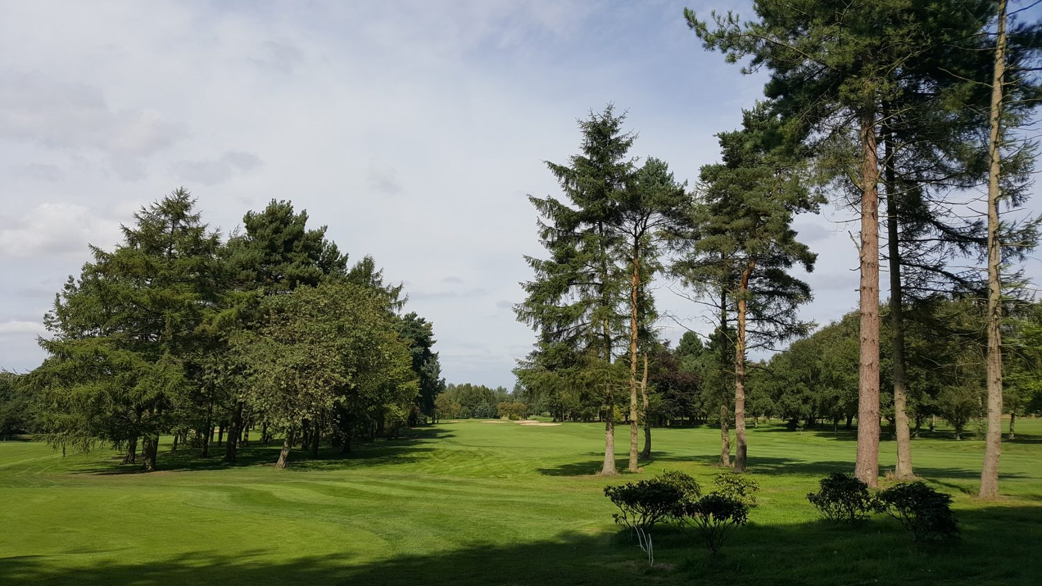 South Staffs GC